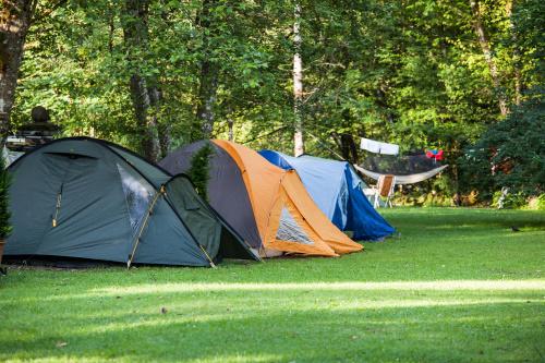 אוהלים מומלצים לקמפינג – סקירת הטובים ביותר 2021