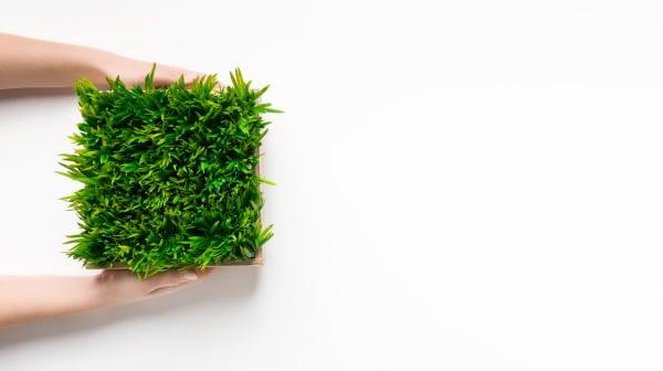 דשא סינטטי מומלץ – הטובים ביותר לשנת 2020